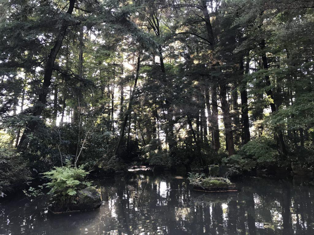 長野県安曇野市穂高神社の池