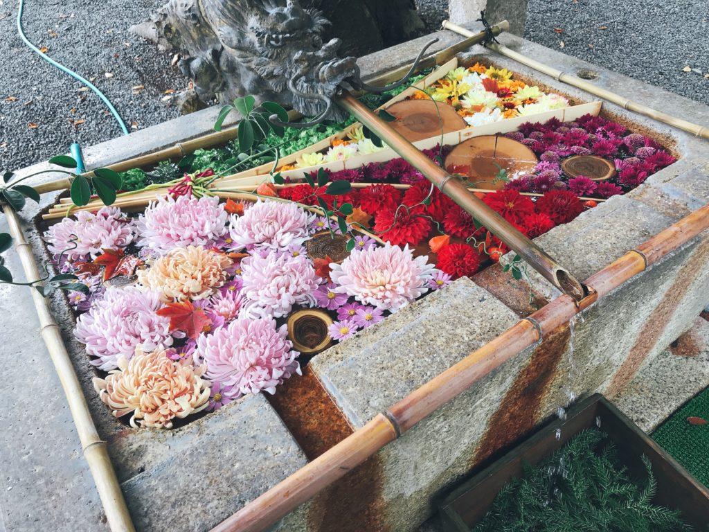 長野県安曇野市穂高神社の花の水飲み場の写真